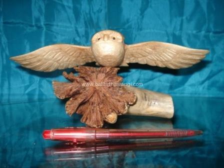 Flying Owl Parasit Wood<br>TW0293