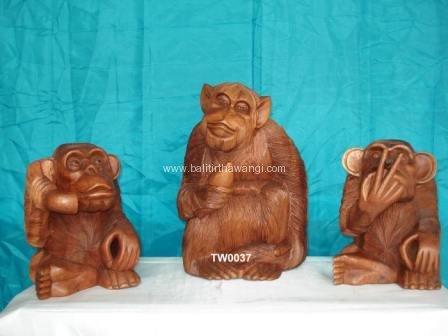 Gorila<br>TW0037