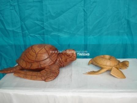 Turtle<br>TW0049