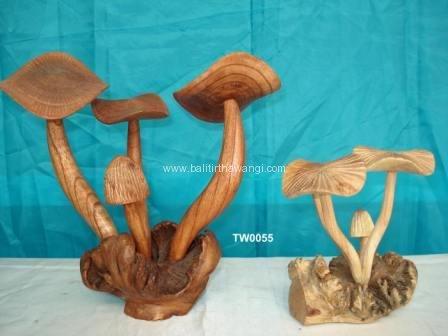 Mushroom<br>TW0055