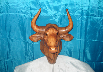Bull Head<br>TW0363