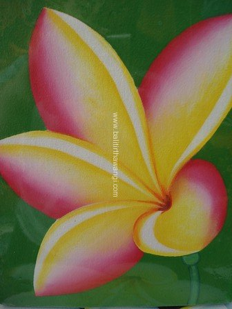 Frangipani Flower<br>MR004