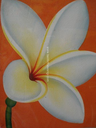 Frangipani Flower<br>MR005