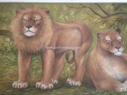 Lion<br>MR065