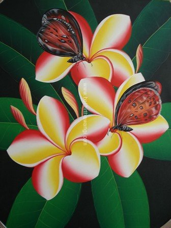Frangipani Flower with butterfly<br>MR079