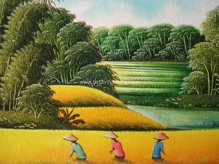 Rice Field<br>MR086